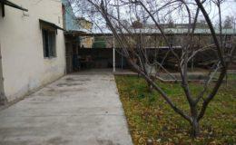 kupit-bazu-37-sot-370-kv-m-na-massive-kujlyuk-v-tashkente-4