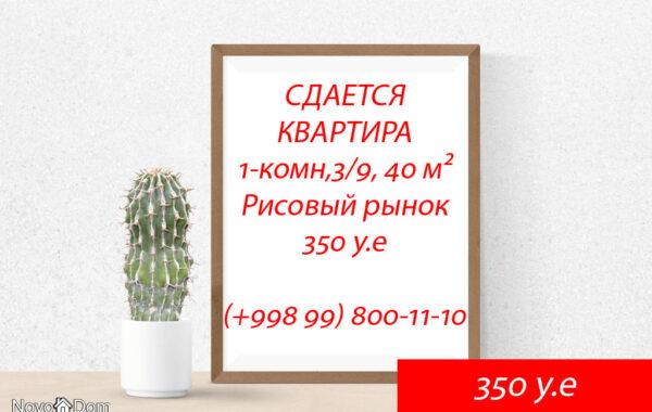 Снять 1-комнатную квартиру около Рисового рынка в Ташкенте